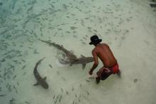 44238_Langkawi_Pulau Payar Marine Park_d338-27